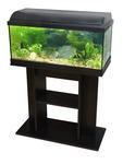 CATGATO Akvarium Pacific 80x30x40